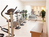 FOURSIDE HOTEL VIENNA CITY CENTER - Fitness
